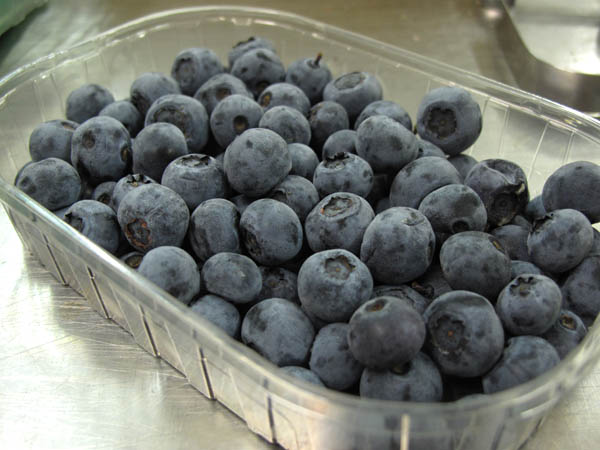 DAPDULBlueberries